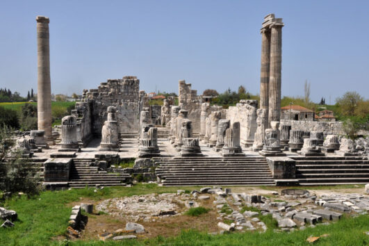 Priene, Miletos and Didyma Private Tour