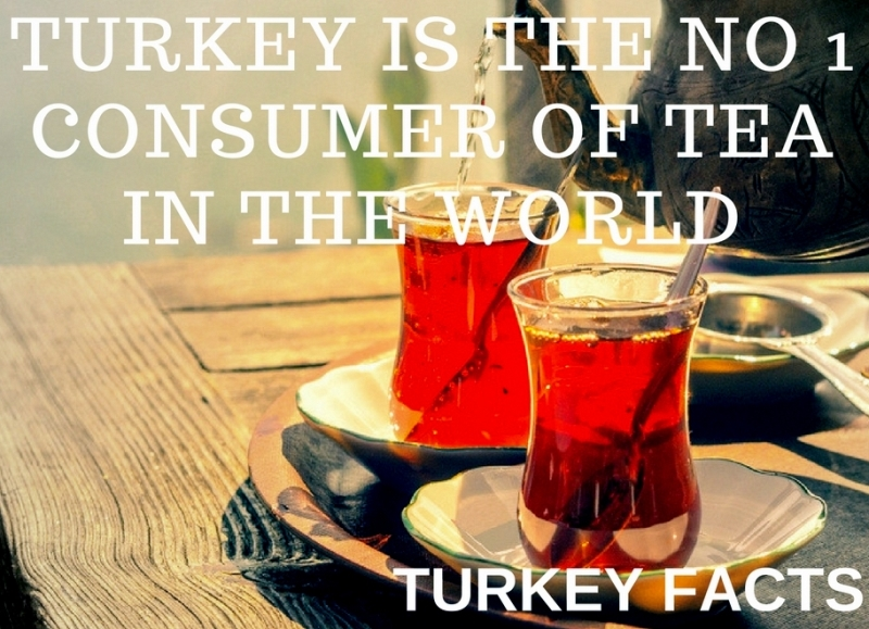 TURKEY IS THE NO 1 CONSUMER OF TEA IN THE WORLD